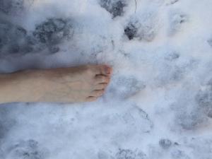 Snöfot